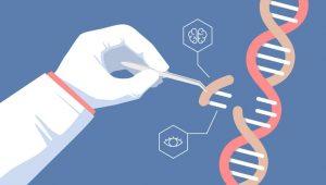 ¿Qué podemos esperar de la edición genética en 2019?
