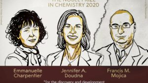 Un Nobel perdido para la ciencia básica española