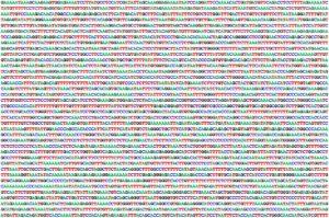 20 años del genoma humano
