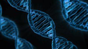 Cuando creíamos que ya lo sabíamos todo de nuestro genoma